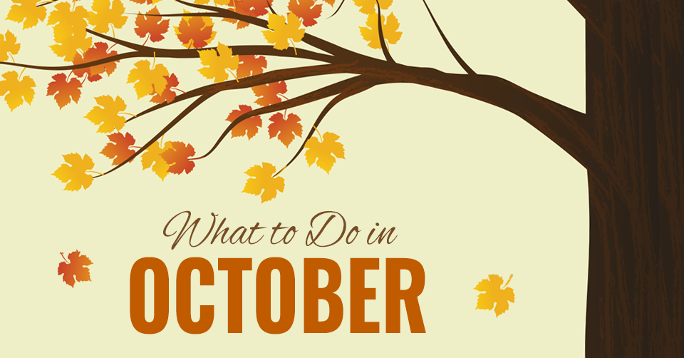 what-to-do-in-october.png